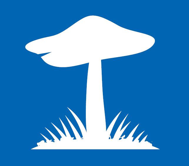 mushroom graphic
