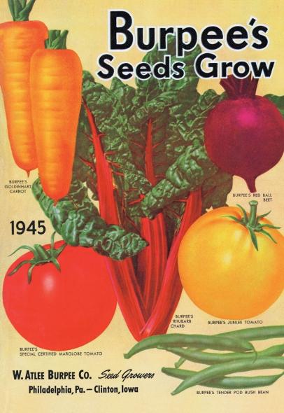 Burp's Seeds Grow