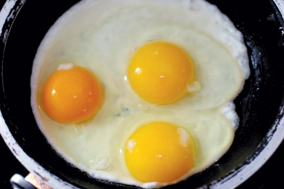 Cracking The Code: A Guide to Buying Eggs | Edible Philly