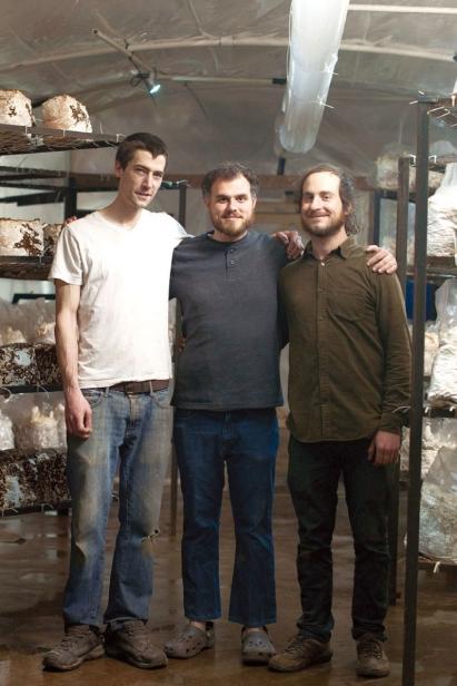 Mycopolitan Mushroom Company's Dan, Tyler and Brian