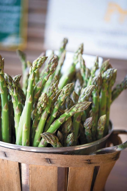 Asparagus at Oley Valley Organics