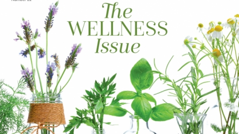 The Power of Plant Medicine | Edible Philly